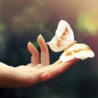 7 секретов, которые помогут вам обрести гармонию