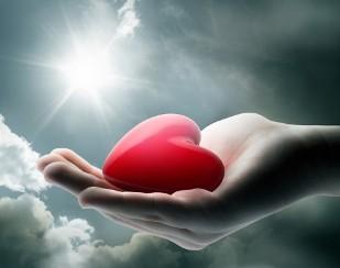 подарить свое сердце