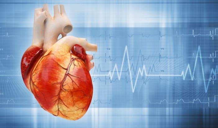 кардиограмма сердце