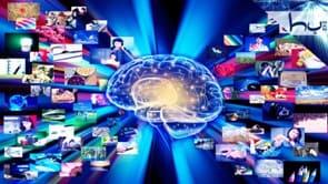 мозг в информационном потоке