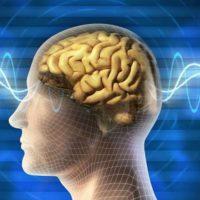 Какие лекарства попить, чтобы улучшить память и работу мозга