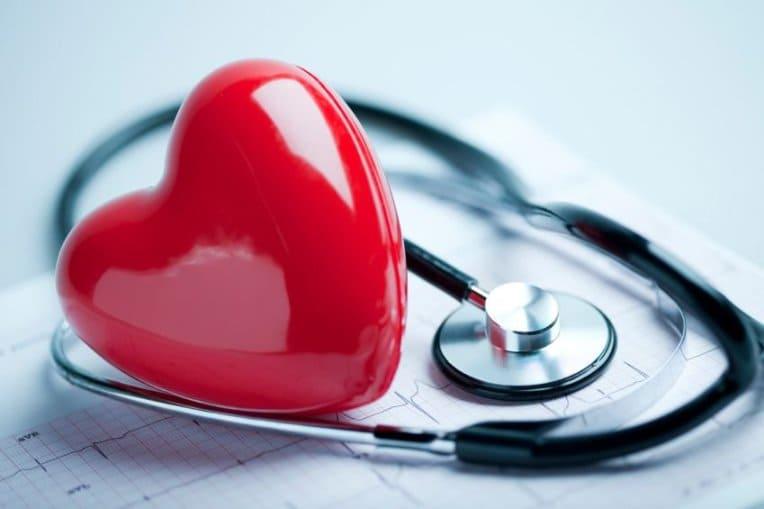 сердце, кардиология