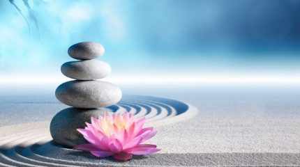 10 вещей, которые стоит удалить из свой жизни, чтобы избавиться от лишних переживаний и обрести гармонию